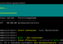 Windows Server Containers を PowerShell で操作する #windows #docker