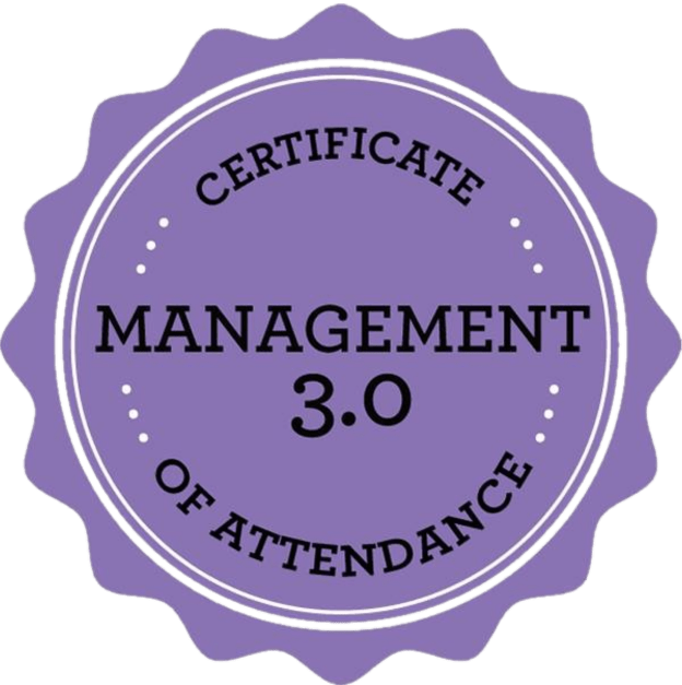 Management 3.0 Foundation