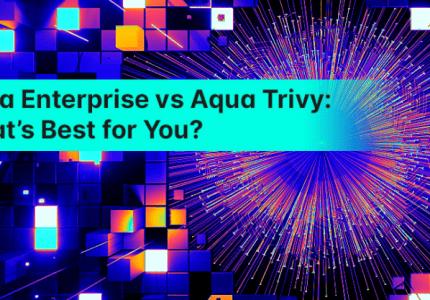Aqua Enterprise vs Aqua Trivy:あなたに最適なものは? #aqua #セキュリティ#コンテナ #trivy