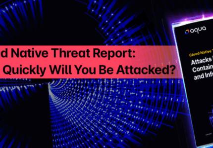 クラウドネイティブの脅威レポート:どのくらいの速度で攻撃されるのか #aqua #コンテナ #セキュリティ #レポート